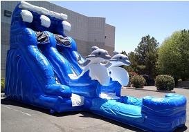 olphin Waterslide Rental